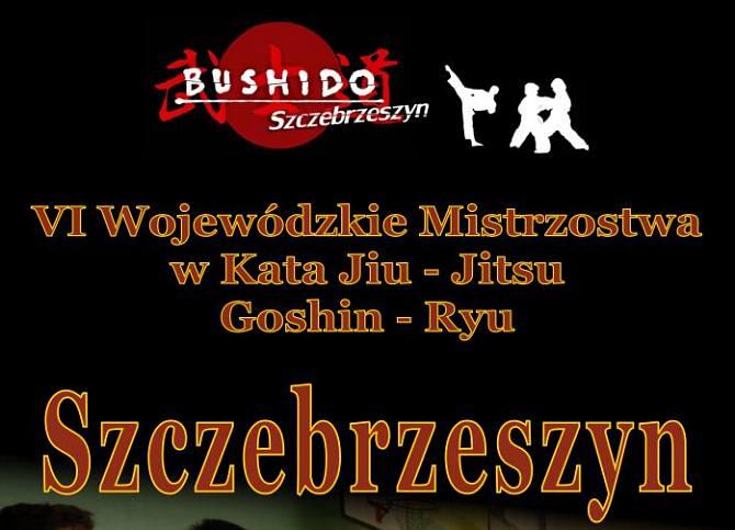 plakat_jiu_jitsu_2013